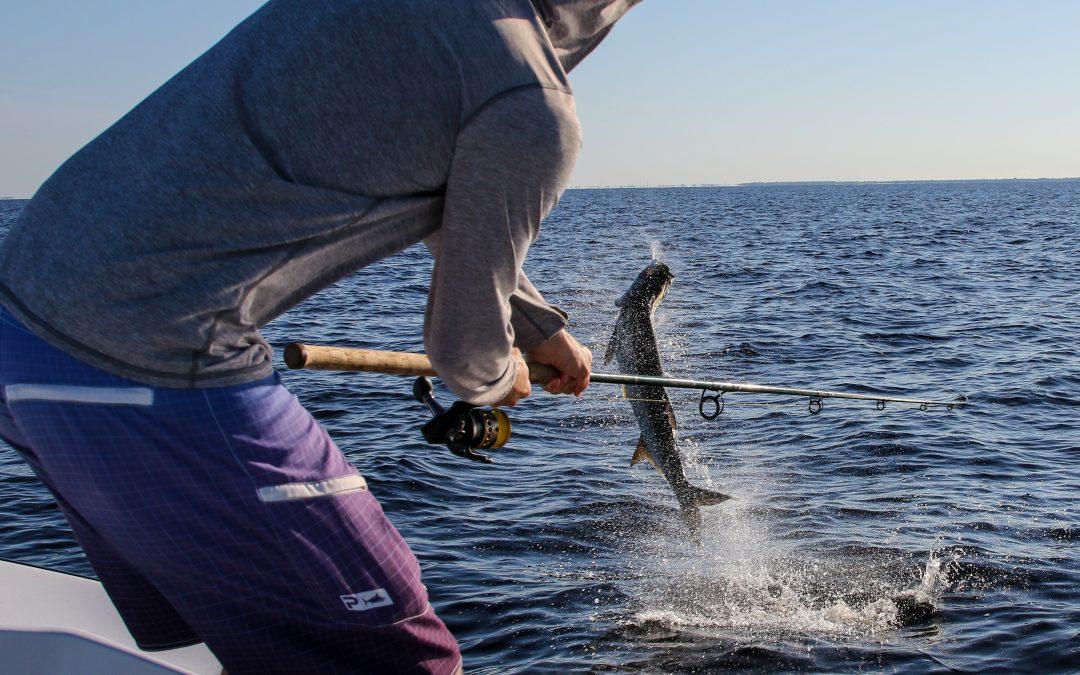 Florida Tarpon Fishing Report 08-01-2021